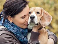 Депрессия у собак: причины, симптомы и лечение
