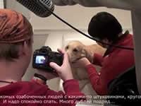 Видео: как голден Санечка снималась в клипе